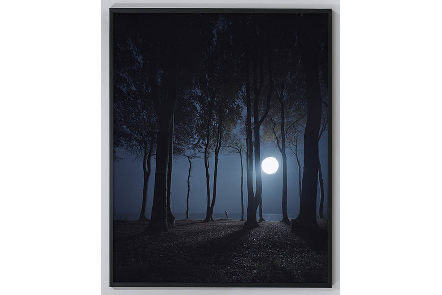 "Andreas Mühe ""Gespensterwald"" 2015, c-print, framed; 220 x 175 cm; Courtesy of the artist and Schloss Kummerow"
