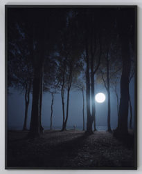 "Bildnachweis: Andreas Mühe ""Gespensterwald"" 2015, c-print, framed; 220 x 175 cm; Courtesy of the artist and Schloss Kummerow"